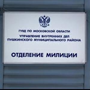 Отделения полиции Наровчата